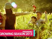 Making Vegetables - Promo
