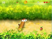 Running Hamster