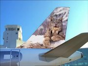 Frontier Airlines Commercial: Best Kept Secret