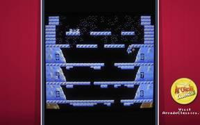 Ice Climber Arcade Game