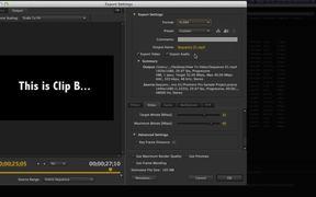 Adobe Create Suite Tutorial - Workflow Integration
