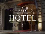 Atrapalo Commercial: Pets Hotel