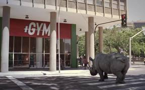 TNT Commercial: Rhino