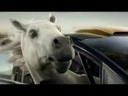 Betfair Commercial: Tap Tap Boom Horseracing