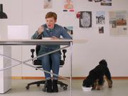 Labamba Commercial: Office Dog