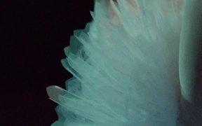 Royal Danish Ballet: Swan Lake