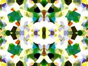The Splendor of Color Kaleidoscope