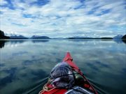 What's So Special About Glacier Bay?