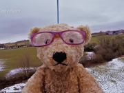 Launching a Teddy into Space - Specsavers