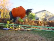 Crazy Colorful Backyard Slacklining Sesh