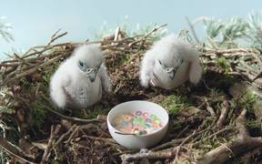 Old Spice Campaign: Nest