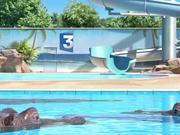 France 3 Video: Hippopotame - Toboggan