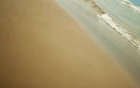 The Beach and Sea Surf