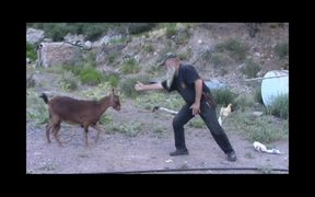 GoatTao: Way of the Goat Training