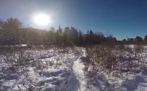 Winter K9 Training for Kids