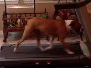 Max - Interval Training