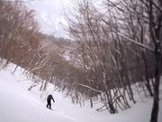 Winter: Promotion Campaign The Republic of Korea