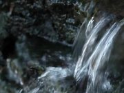 Fast Stream in Macro View