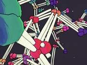 Atom Array