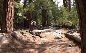 Yosemite National Park: Hiking Half Dome