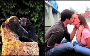 Chattanooga Zoo Commercial