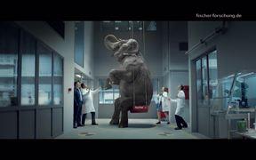 Fischer - Commercial