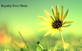 Happy Day - Royalty Free Music