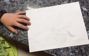 How to Draw a Cantering Horse