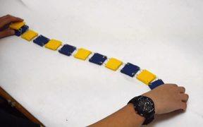 Chain Snake