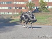 Google Atlas Robots
