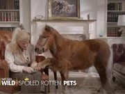 Nat Geo Wild Video: Spoiled Rotten Pets