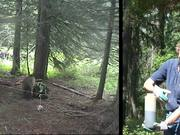 Glacier National Park: Grizzly Bear Research