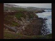 Channel Islands NP: A Mixture of Two Worlds