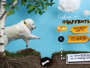 Beeline Mobile: Where Is the Dog Buried?