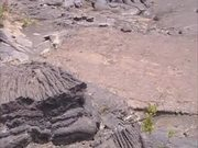 Hawaii Volcanoes NP: Footprints in the Lava