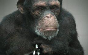 PETA : 98% Human