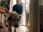 Pedigree Commercial: Bad Dog, Good Dog