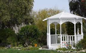 Nature and a White Gazeebo