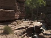 Grand Canyon National Park: Patios at Deer Creek