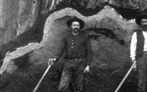 SKCNP: General Grant Tree Trail Virtual Tour