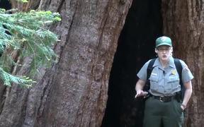 SKCNP: Redwood Mountain Virtual Tour Part 1