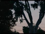 Yosemite Trailer