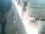 Pipestone Pig Piglet Cruelty Undercover Video MFA