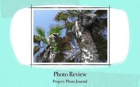 Project 12 Photo JournalDiary