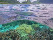 NP of American Samoa: The Islands of Sacred Earth