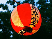 Traditional Summer Fest