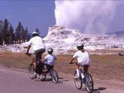 Yellowstone National Park: Fountain Geyser