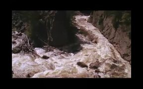 Yellowstone National Park: Land to Life