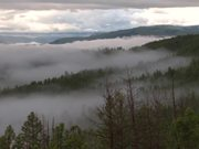Yellowstone National Park: Morning Fog