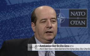 NATO's Smart Energy